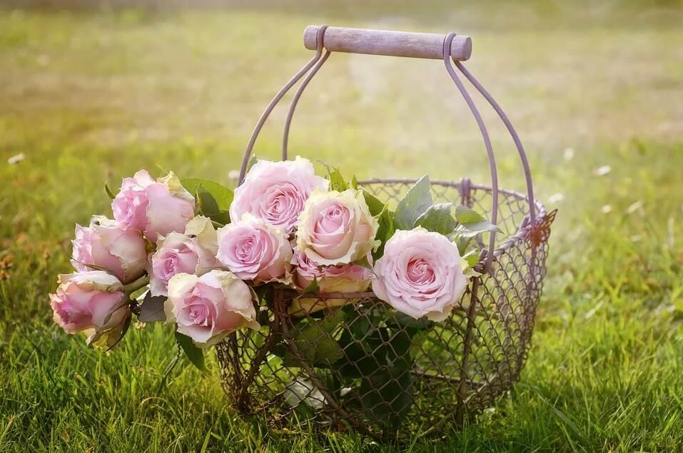 цветя за аранжировки